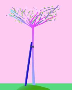 arbre fleuri avec tuteur
